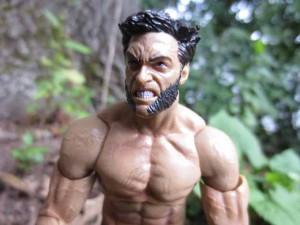 MS Wolverine 2