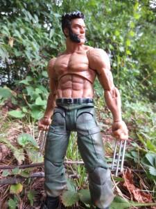 MS Wolverine 24