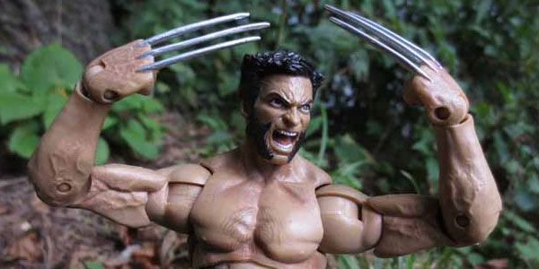 MS-Wolverine-feat