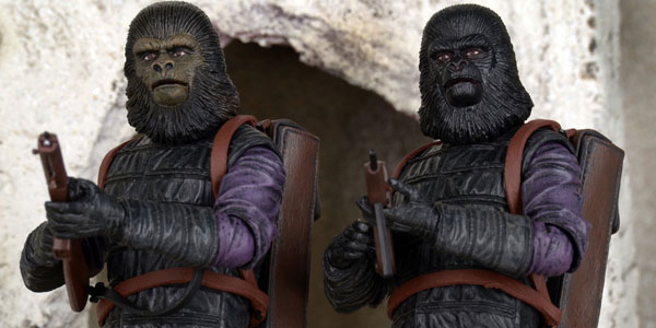 gorilla-2pk-feat