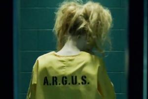Harley-Quinn-Arrow