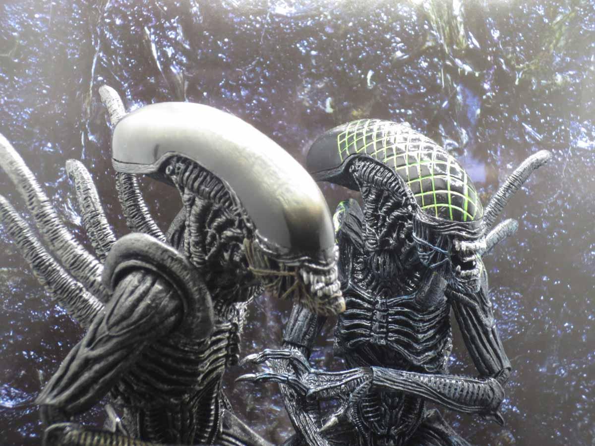 NECA AvP Aliens 016